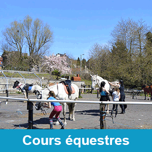 Cours Equestres